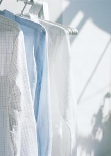 ハンガーにかけられたシャツの写真素材 [FYI03029118]