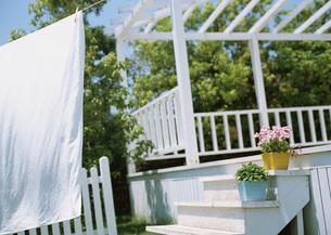 庭の鉢植えと洗濯物の写真素材 [FYI03029414]