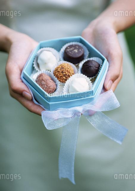 トリュフチョコレートの写真素材 [FYI03029523]