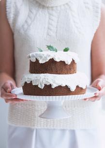ココアケーキの写真素材 [FYI03029529]