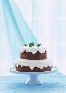 ココアケーキの写真素材 [FYI03029533]
