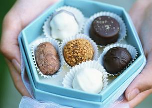 トリュフチョコレートの写真素材 [FYI03029577]