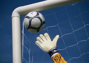 ボールをキャッチしようとするキーパーの手の写真素材 [FYI03029917]