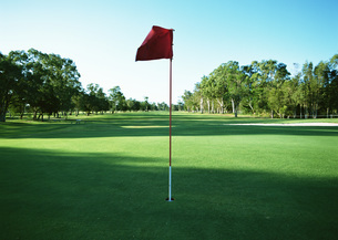 ゴルフグリーンの写真素材 [FYI03029947]