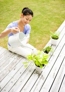 植木に水をやる女性の写真素材 [FYI03030158]