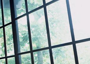 ガラス戸の写真素材 [FYI03030752]