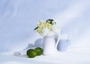 生け花の写真素材 [FYI03030991]
