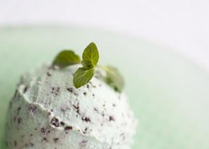 チョコミントアイスの写真素材 [FYI03031096]