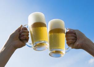 ビールで乾杯の写真素材 [FYI03031149]