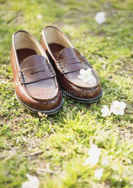 学生靴の写真素材 [FYI03031742]