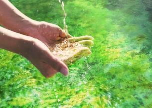 水を掬う手の写真素材 [FYI03032419]