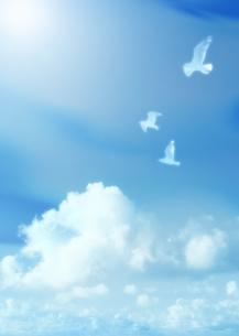 青空と鳥の写真素材 [FYI03032475]