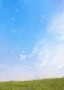 シャボン玉と草原の写真素材 [FYI03032493]