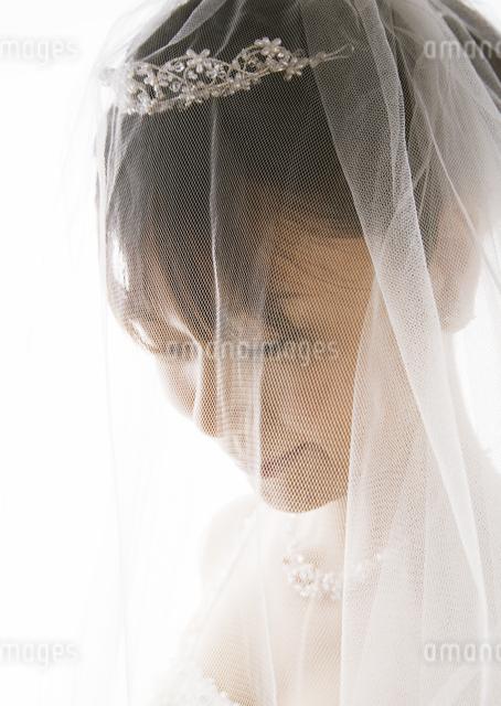 新婦の写真素材 [FYI03033532]