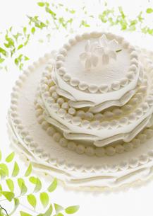 ウェディングケーキの写真素材 [FYI03033559]