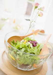 グリーンサラダの写真素材 [FYI03034369]