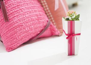 ピンクのクッションとカランコエの写真素材 [FYI03035363]
