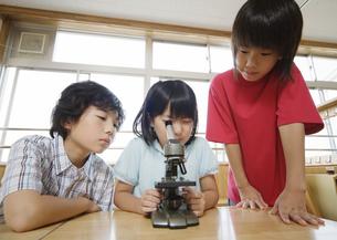 顕微鏡を覗く小学生の写真素材 [FYI03036711]