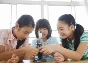 顕微鏡を調整する小学生の写真素材 [FYI03036714]
