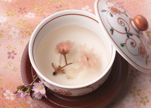 桜湯の写真素材 [FYI03037891]