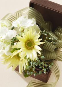 花のギフトボックスの写真素材 [FYI03038558]