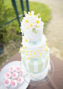 ウェディングケーキの写真素材 [FYI03038824]