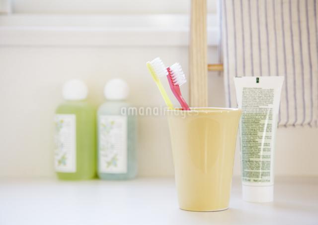 歯ブラシとコップの写真素材 [FYI03038987]