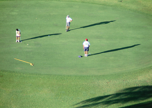 ゴルフ場の写真素材 [FYI03039607]