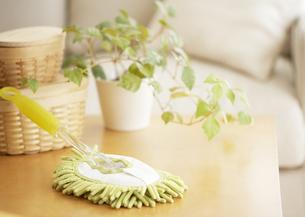 ハンディモップと鉢植えの写真素材 [FYI03040023]