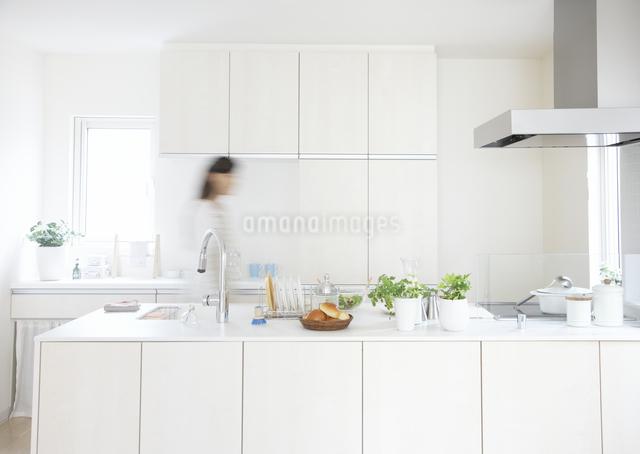 キッチンの女性の写真素材 [FYI03040089]