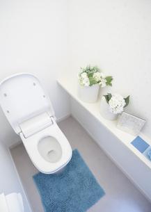 トイレの写真素材 [FYI03040103]