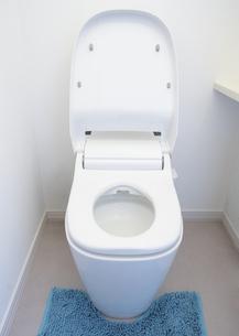 トイレの写真素材 [FYI03040115]