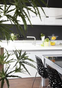 キッチンとダイニングルームの写真素材 [FYI03040129]