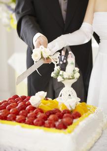 ケーキカットをする新郎新婦の写真素材 [FYI03040426]