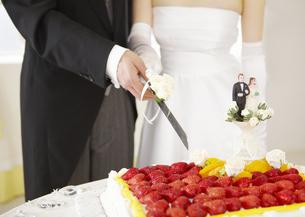 ケーキカットをする新郎新婦の写真素材 [FYI03040427]