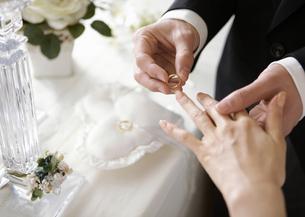 指輪をはめる新郎新婦の写真素材 [FYI03040431]
