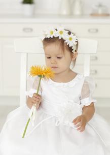 ドレス姿の女の子の写真素材 [FYI03040496]