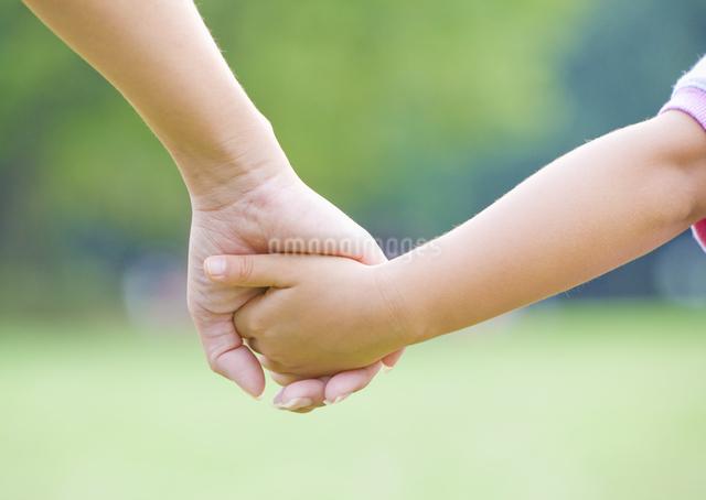 手をつなぐ親子の写真素材 [FYI03040909]