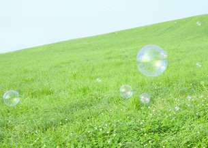 草原とシャボン玉の写真素材 [FYI03040994]