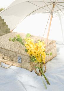 日傘とトランクの写真素材 [FYI03041134]