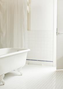 バスルームの写真素材 [FYI03041151]
