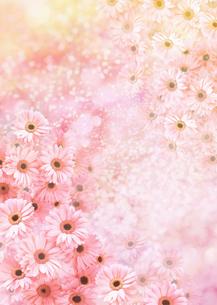 春イメージ(CG)の写真素材 [FYI03041220]