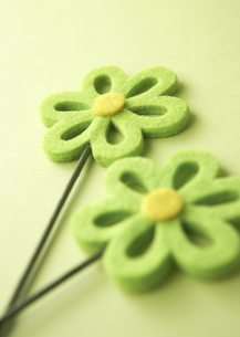 フェルトの花の写真素材 [FYI03041364]
