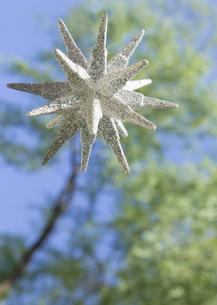 新緑と星形のオブジェの写真素材 [FYI03041924]