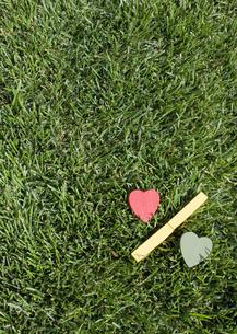 芝生とハートの%マークの写真素材 [FYI03041932]