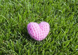 芝生と毛糸のハートの写真素材 [FYI03041933]