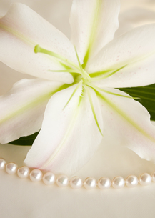 ユリと真珠の写真素材 [FYI03042148]