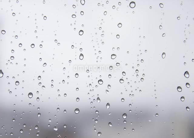 窓に付いた水滴の写真素材 [FYI03042370]