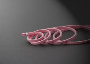 紐のヘビの写真素材 [FYI03042458]