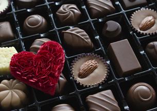 チョコレートの詰め合わせの写真素材 [FYI03042723]